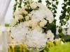 versailles-nunta-la-cort-074